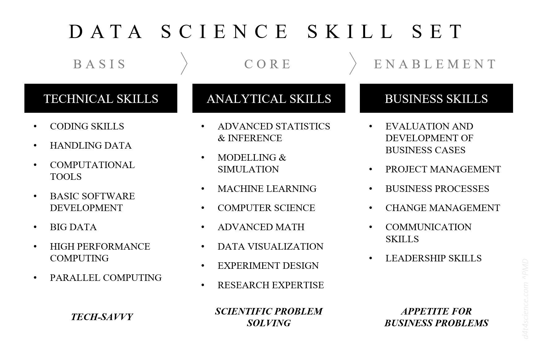 DATA SCIENTIST SKILL SET