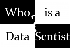 WHO IS A DATA SCIENTIST?